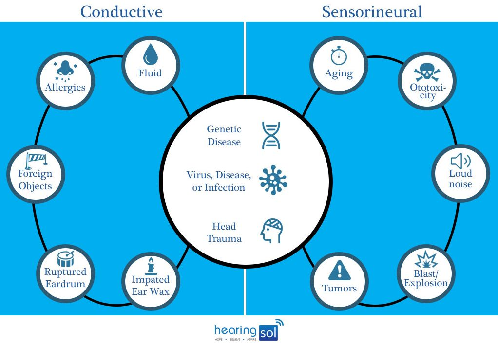 Causes of Conductive & Sensorineural Hearing Loss