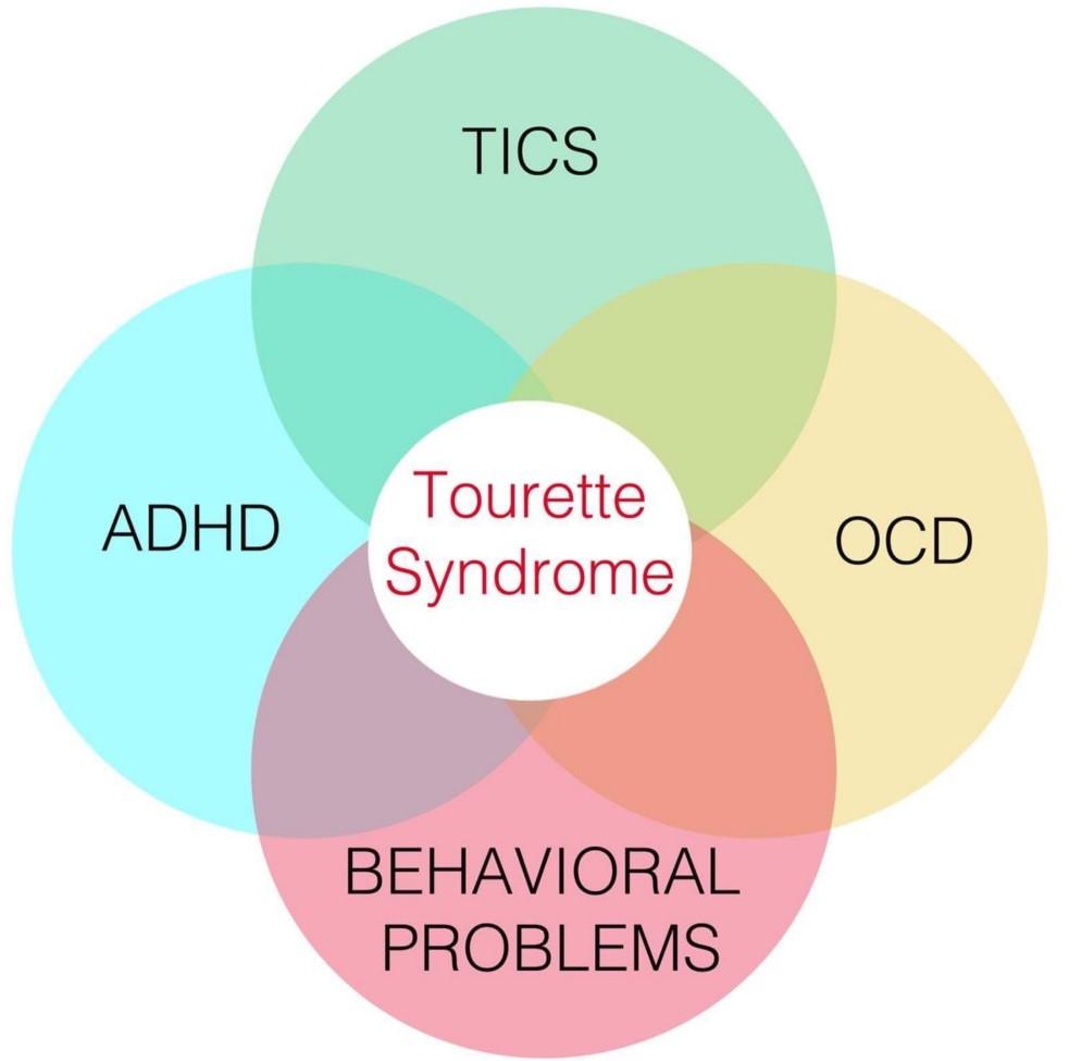 Tourette disorders