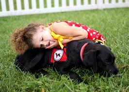 Autism Assistance Dogs for Children