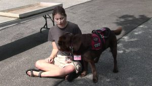 Autism Assistance Dogs for Adults