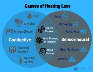 bilateral hearing loss causes